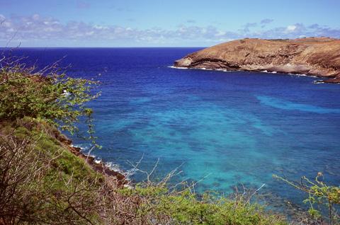 Hawaii098