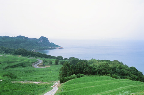 Teshima6